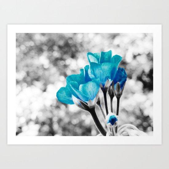 Turquoise FloWERS Art Print