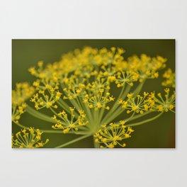 Garden Gold Canvas Print