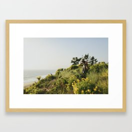 Point Dome, California Framed Art Print