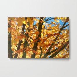 """""""Autumn Leaves"""" Metal Print"""