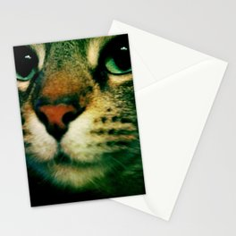 Puss Stationery Cards