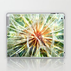 Up Close and Personal Dandelion Laptop & iPad Skin
