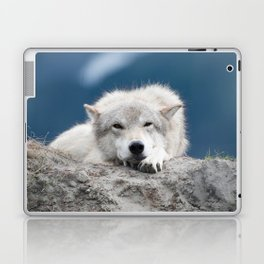 Sleepy Wolf Laptop & iPad Skin