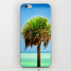 Stately Palm iPhone Skin