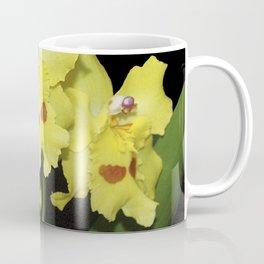 Glorious Golden Orchid - Odontonia Yellow Parade Alpine Coffee Mug