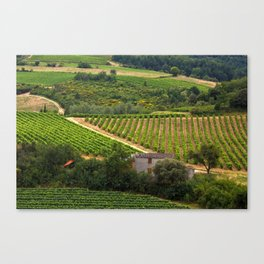 landscape in southern france 2 Canvas Print