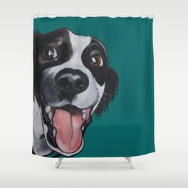 Maeby the border collie mix Shower Curtain