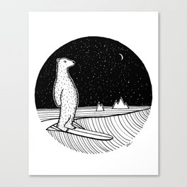 Polar Slide Canvas Print