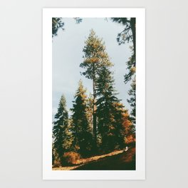 Snow Summit, Big Bear, CA Art Print