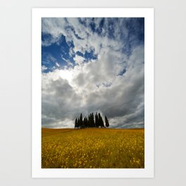 Golden fields and cypresses Art Print