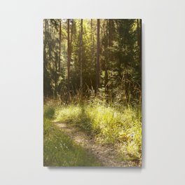 Forest Path Sunny Day #decor #society6 Metal Print