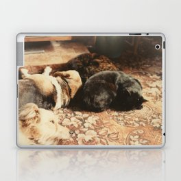 Cats and dogs sleeping on the carpet Laptop & iPad Skin