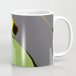 Yellow waterlily with lily pad Coffee Mug