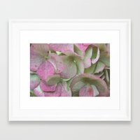 vintage flowers Framed Art Prints featuring Vintage Flowers by Caroline Benzies Photography
