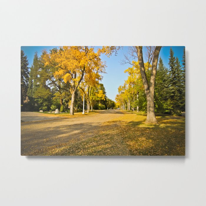 Autumn ... Metal Print