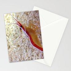 Mister tiny prawn Stationery Cards