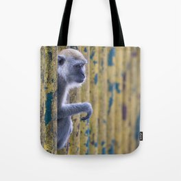 monkey behind colorful bars Tote Bag