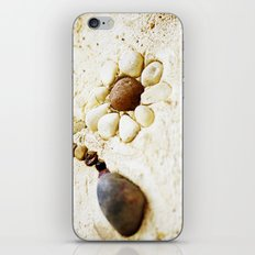 Pebble Daisy iPhone & iPod Skin
