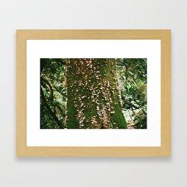 Homage Framed Art Print