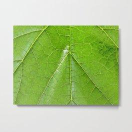 Big green leaf Metal Print