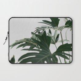 Botanical / Leaf Laptop Sleeve