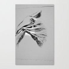 Anatomy 101 Canvas Print