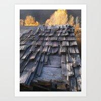 battered shingles Art Print