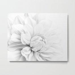 Simply White Dahlia Metal Print