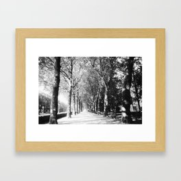 Light Shower Framed Art Print