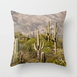 Scenes from Arizona, No. 2 Throw Pillow