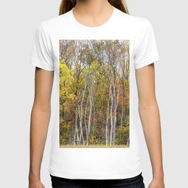 autumn trees in a marsh T-shirt