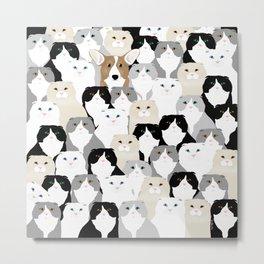 Cats and Dog Metal Print