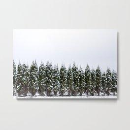 Single File Evergreens Metal Print