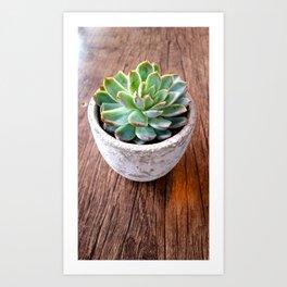 cactus phone case Art Print