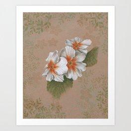 Primrose on Brown Paper Art Print