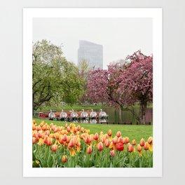Springtime in Boston Art Print