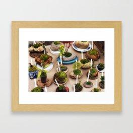 Bonsai Sale Framed Art Print