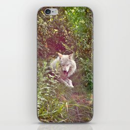 Wolf Relaxation iPhone Skin