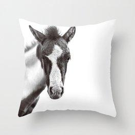 Dartmoor Baby Pony Throw Pillow