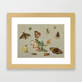 Jan van Kessel the Elder ANTWERP 1626 - 1679 BUTTERFLIES, MOTHS, A DRAGONFLY AND OTHER INSECTS, WITH Framed Art Print