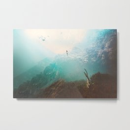 After a great flood Metal Print