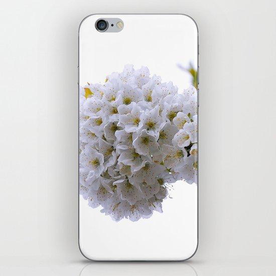 spring mode on iPhone Skin
