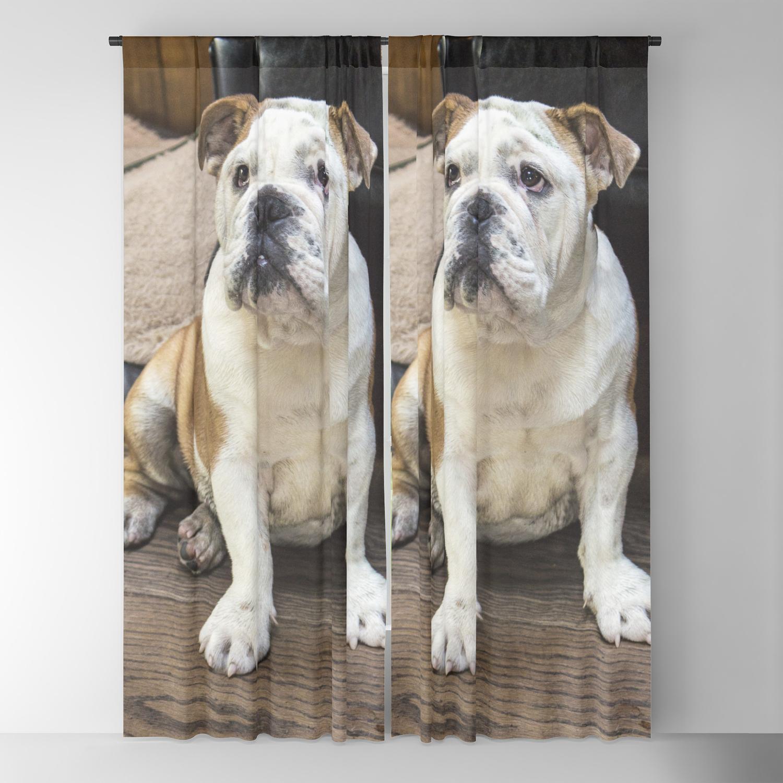 British Bulldog Puppy Blackout Curtain