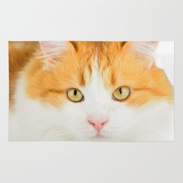 Ginger cat Rug