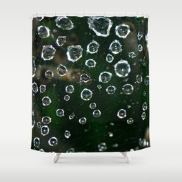 Spiderweb Water Droplets  Shower Curtain