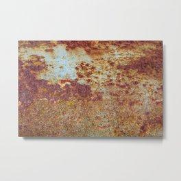 Patterns in Rust Metal Print