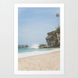 Cliffs of Laguna Beach Art Print