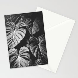 Monstera Black and White Stationery Cards