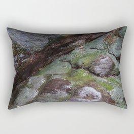Algae Covered Natural Coastal Rock Texture Rectangular Pillow