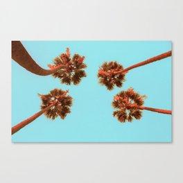 Palmy Skies v2 Canvas Print